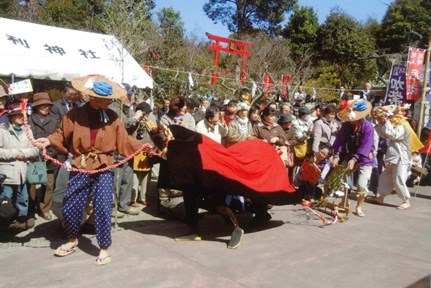庭祭_牛耕の儀2